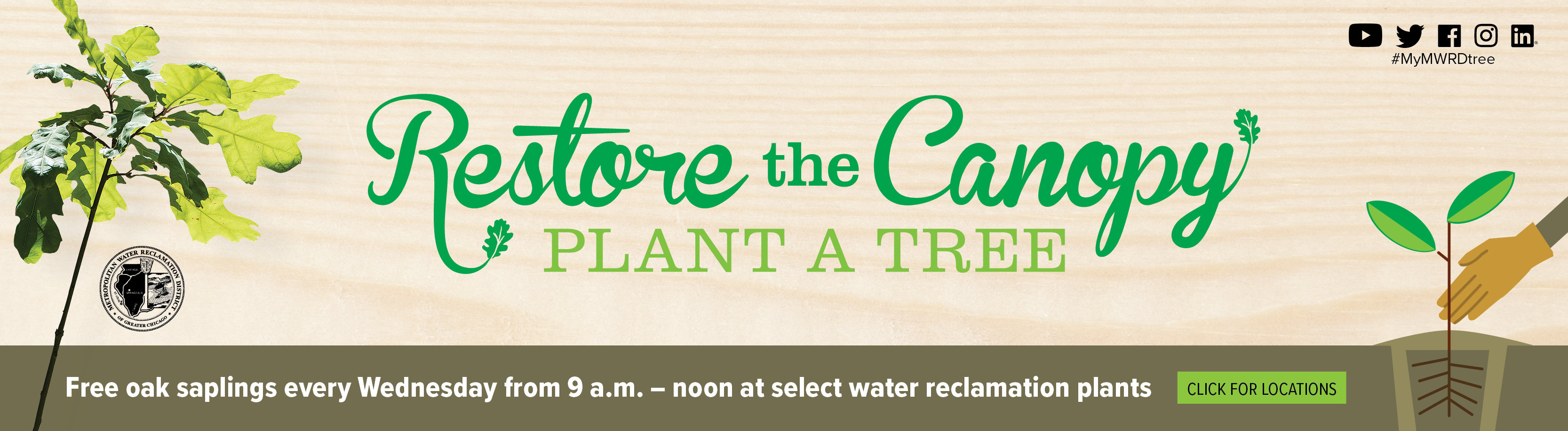 Restore the Canopy, Plant a Tree