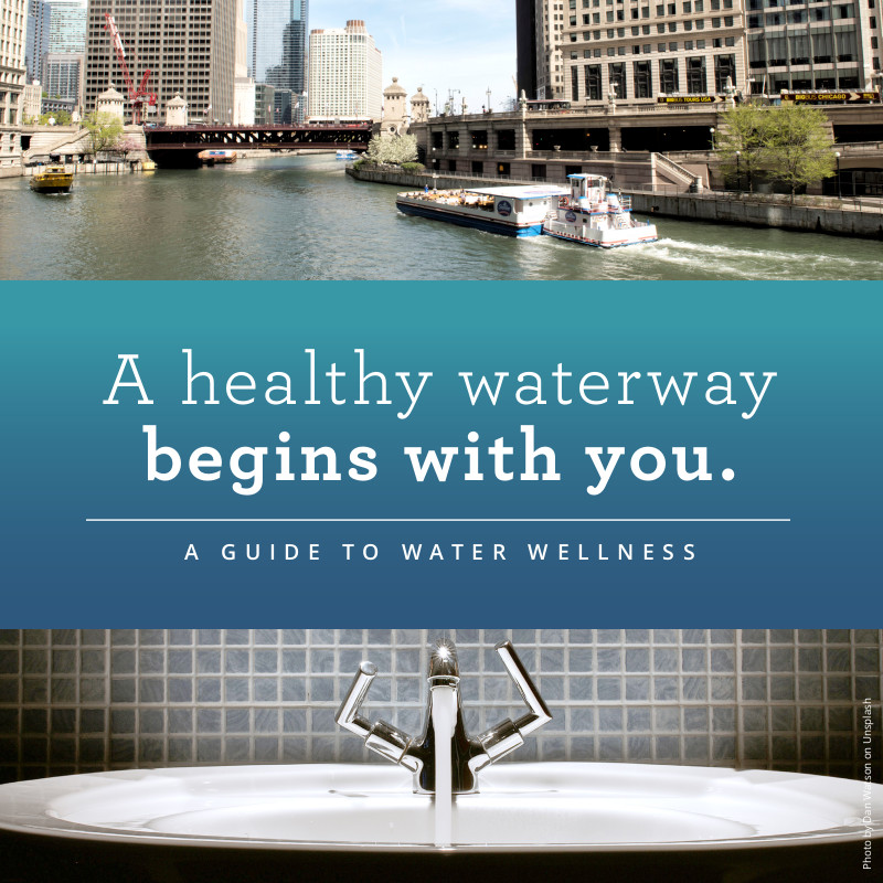 Healthy Waterway